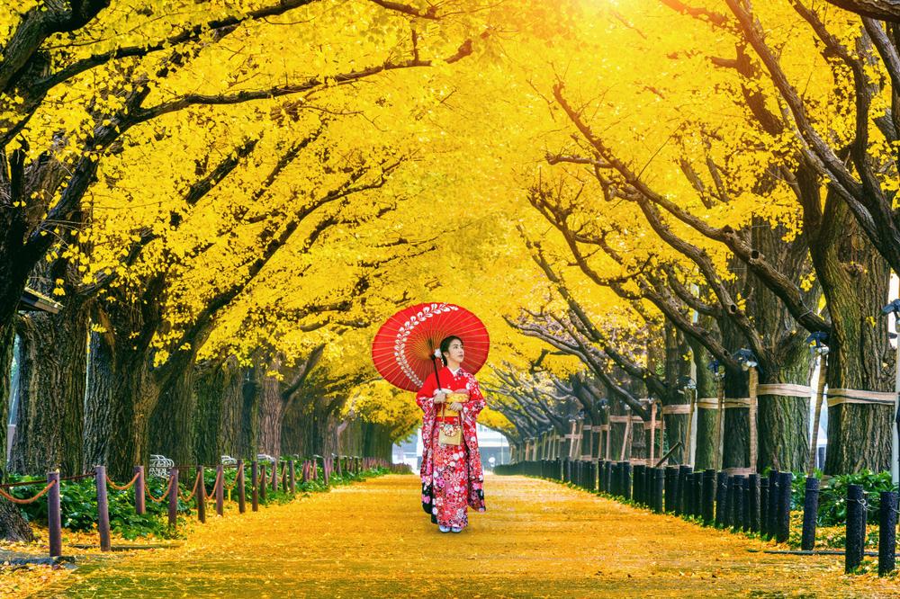 Ragazza in kimono, Giappone