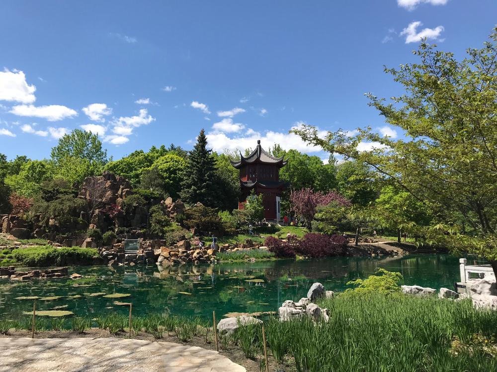 Un'area dei Jardin Botanique